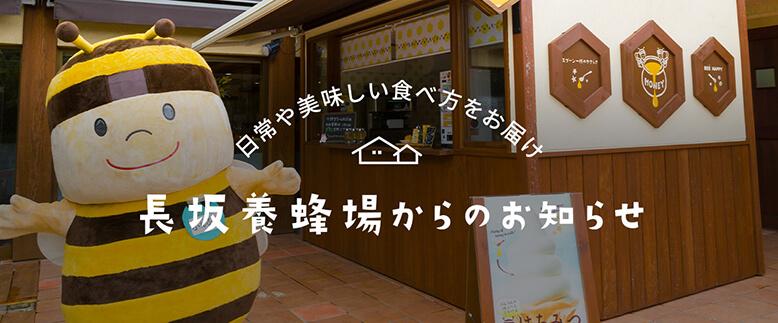 日常や美味しい食べ方をお届け 長坂養蜂場からのお知らせ