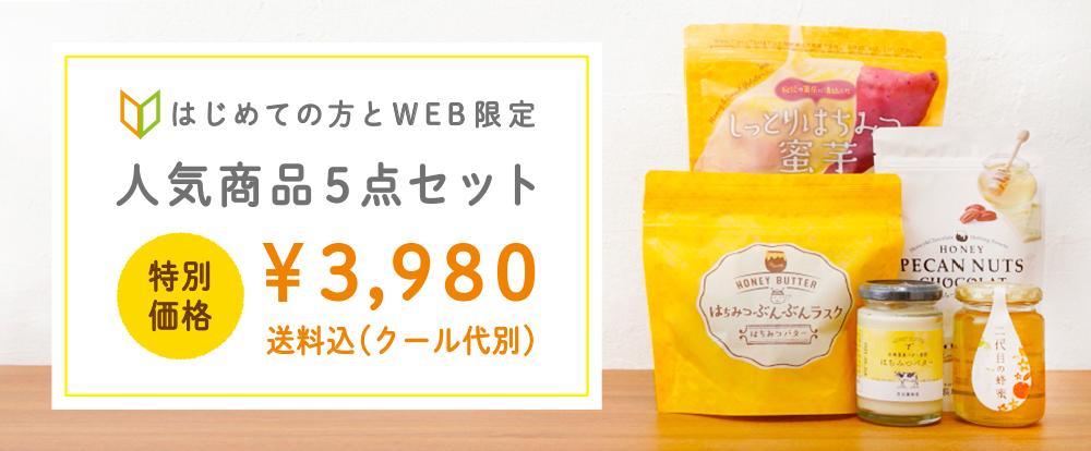 はじめての方とWEB限定 人気商品5点セット ¥3,980 送料込み