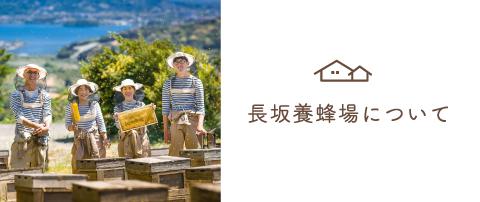 昭和10年創業のはちみつ専門店 長坂養蜂場について
