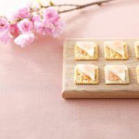 桜の便りギフト